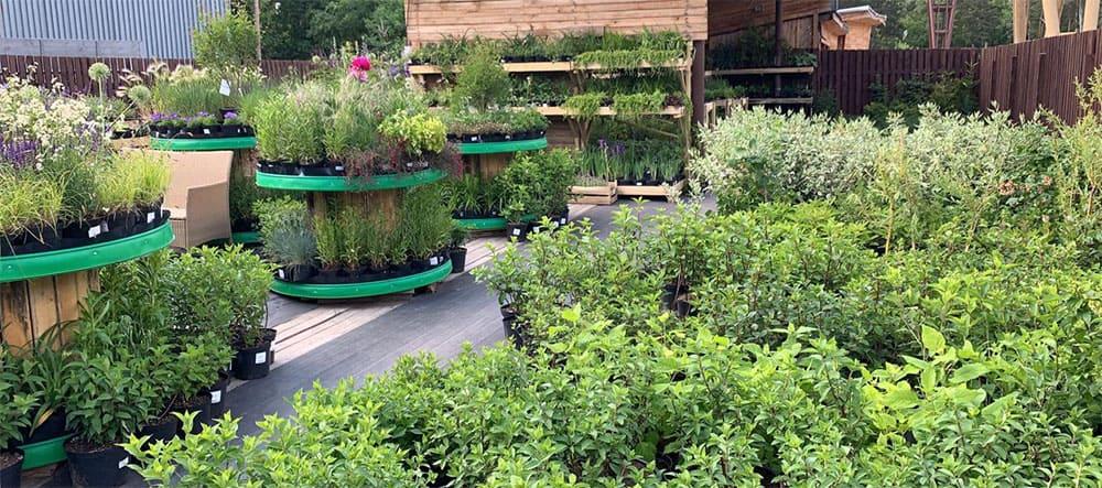 садовый центр Азбука сада